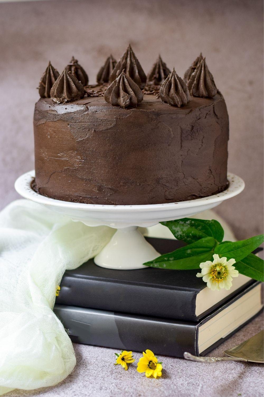 Super Moist Chocolate Cake on a white cake stand